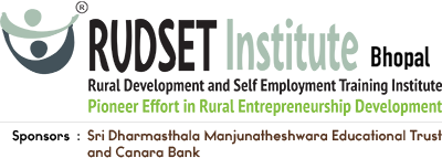 Rudset Institute Logo